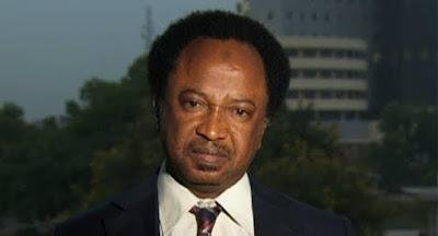 Local News : Buhari's trips are not as frivolous as Jonathan's - Sen. Shehu Sani