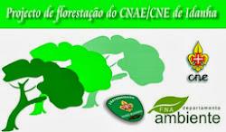 Projecto de Florestação do CNAE/CNE de Idanha