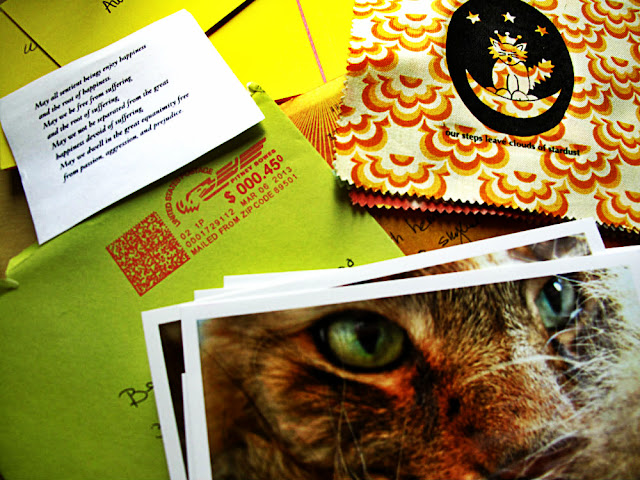 photos cat letters mantras quotes care package thank you