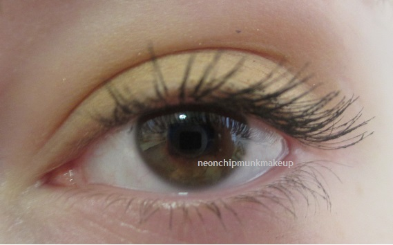 Neon Chipmunk: Tarte Gifted Amazonian Clay Smart Mascara Review