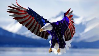 Hawk USA