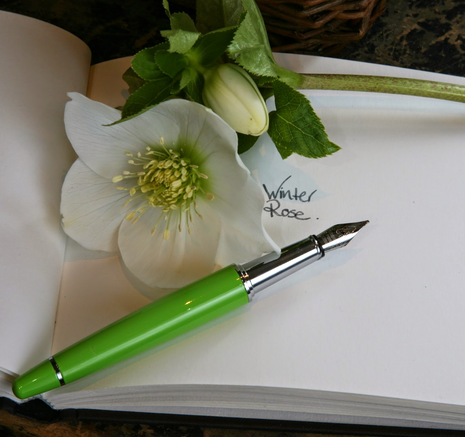 Green PLOOMS fountain pen