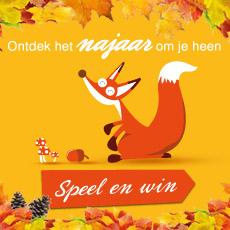 www.landal.nl/najaargame