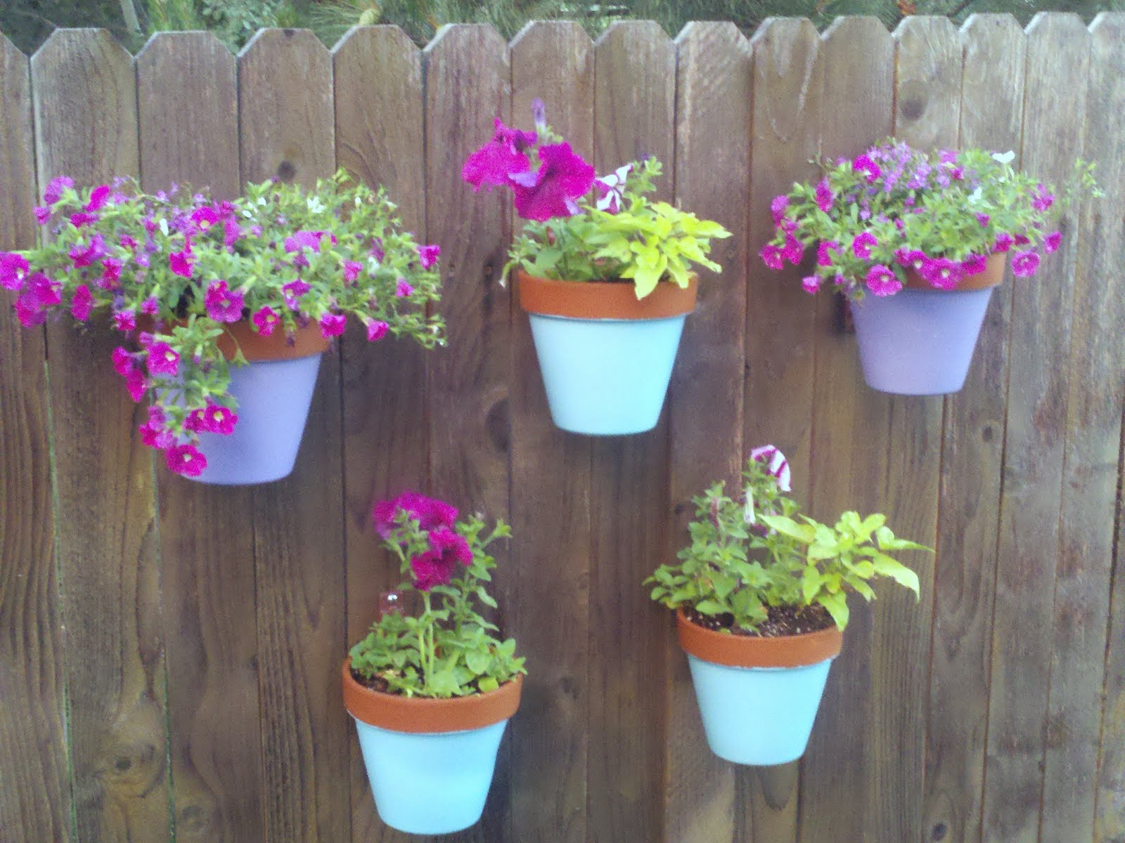 My backyard fence is blooming inspiration for moms - Flower planters for fences ...