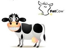 web hosting reviews of Fatcow
