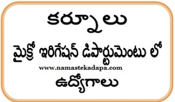 Kurnool Jobs