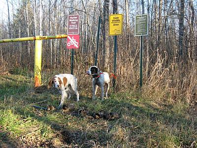 MN+Hunter+Walking+Trail.JPG