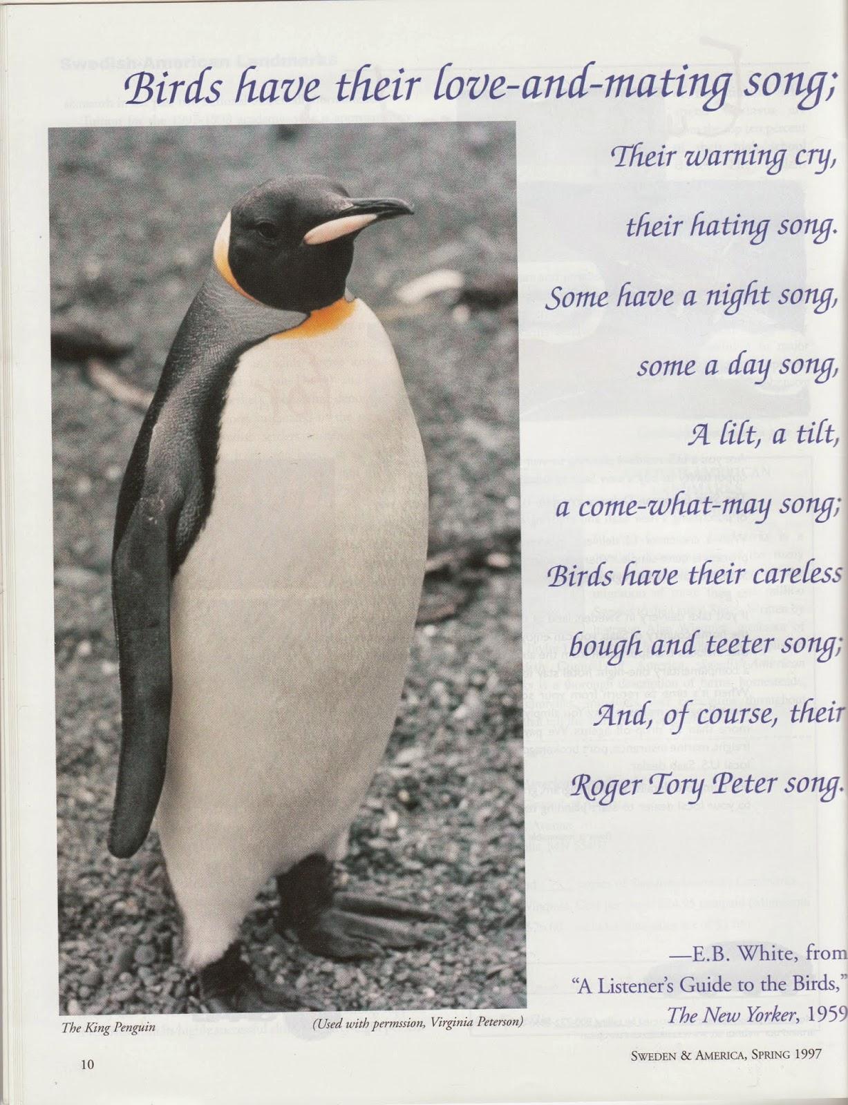 laura u0027s birding blog december 2014