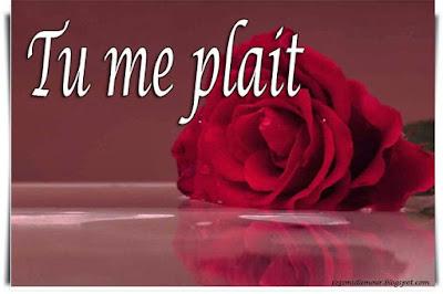 Message d'amour tu me plaît