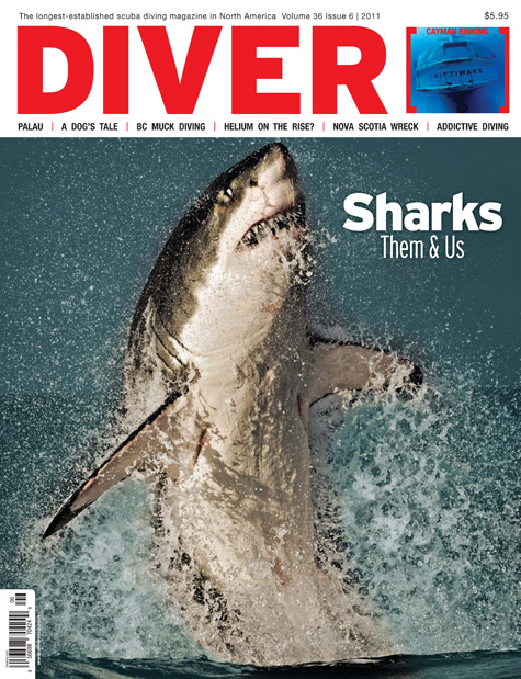 Diver Shark Cover