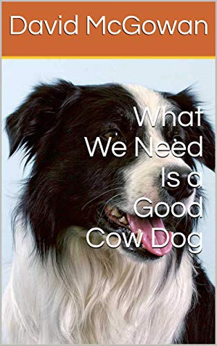 What We Need Is a Good Cow Dog