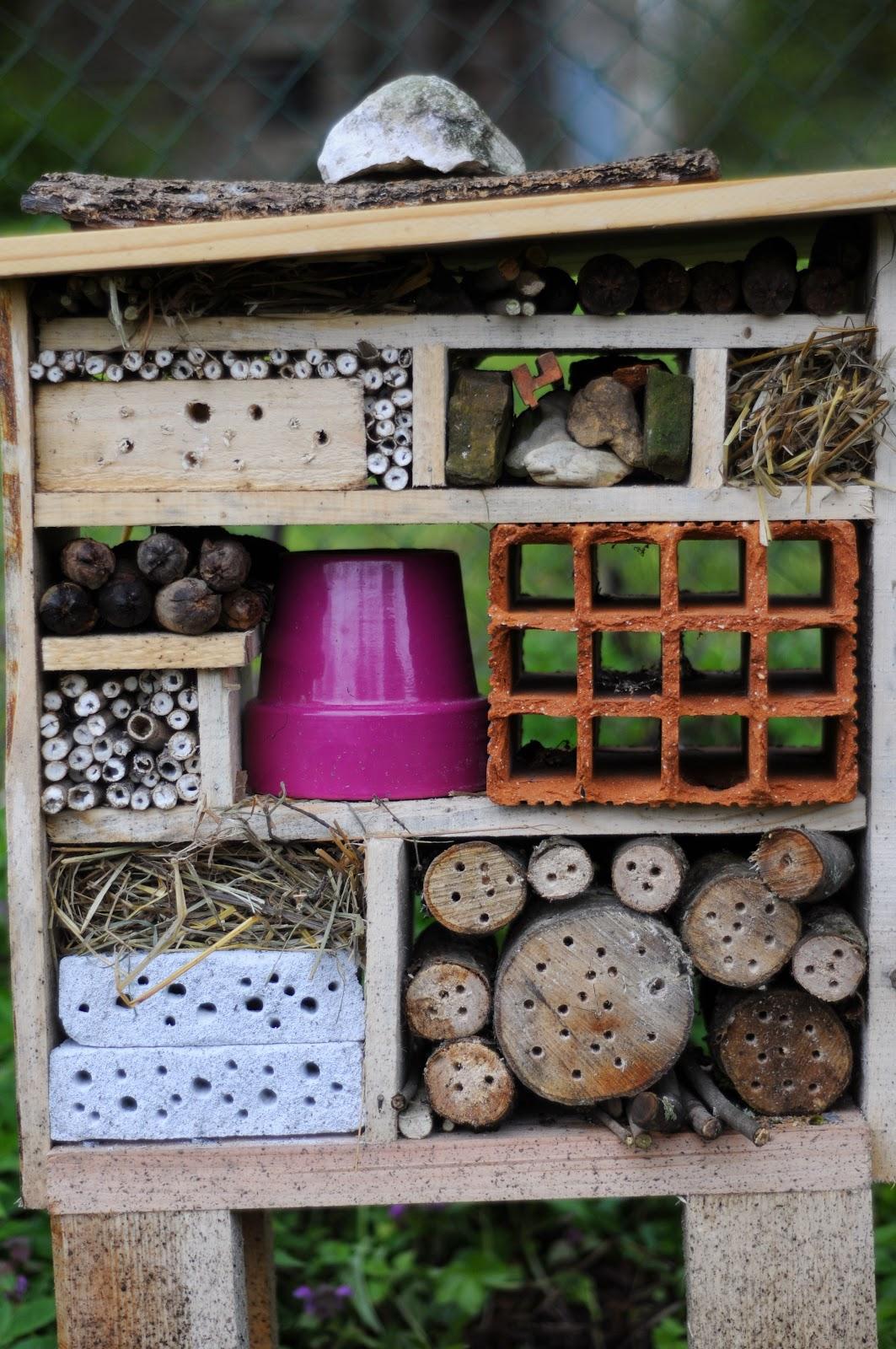 http://blog-jardinsauvage.blogspot.fr/