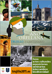 CARTEL OFICIAL AÑO ORELLANA