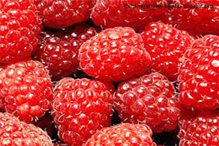 benefits_of_eating_raspberry_fruits-vegetables-benefits.blogspot.com(benefits_of_eating_raspberry_5)