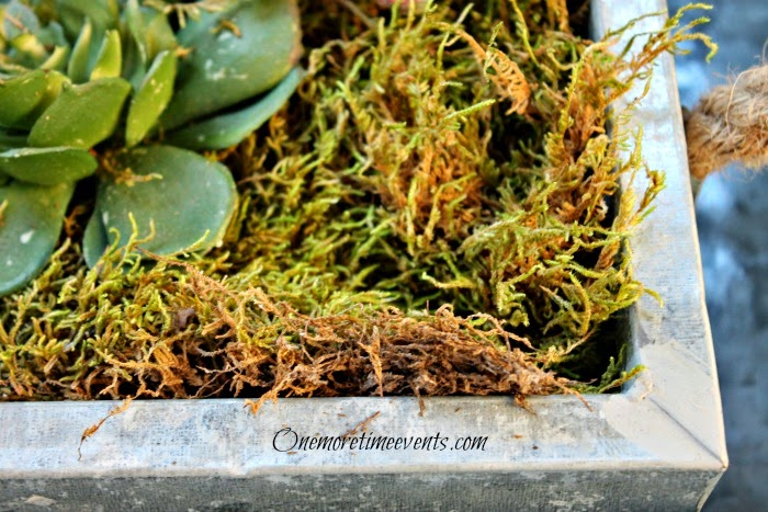 How to make a faux succulent garden in galvanized tray at One More Time Events.com