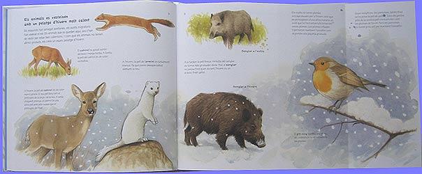 Worksheet. Blog de los nios Pronto llegar el invierno Los animales en
