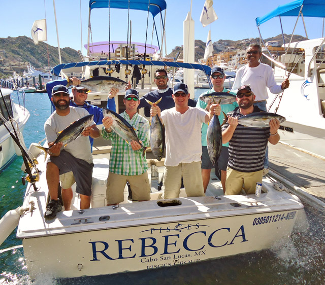 Cabo san lucas fishing report january 23 29 2016 for Cabo fishing charters