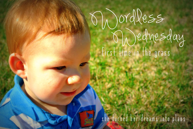 wordless wednesday: first time in the grass
