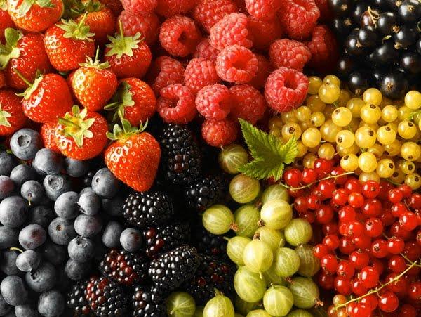 Φρούτα του Δάσους