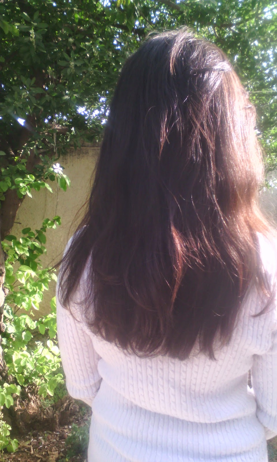 masque argile cheveux gras application