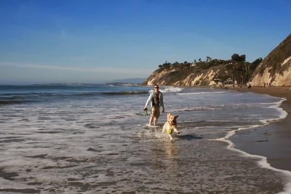 Chasing balls Hendrys Beach Santa Barbara