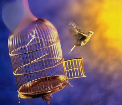 مااجمل ان تكون حراً بحياتك مقيداً بطاعة ربك
