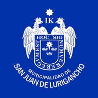 Municipalidad De SJL
