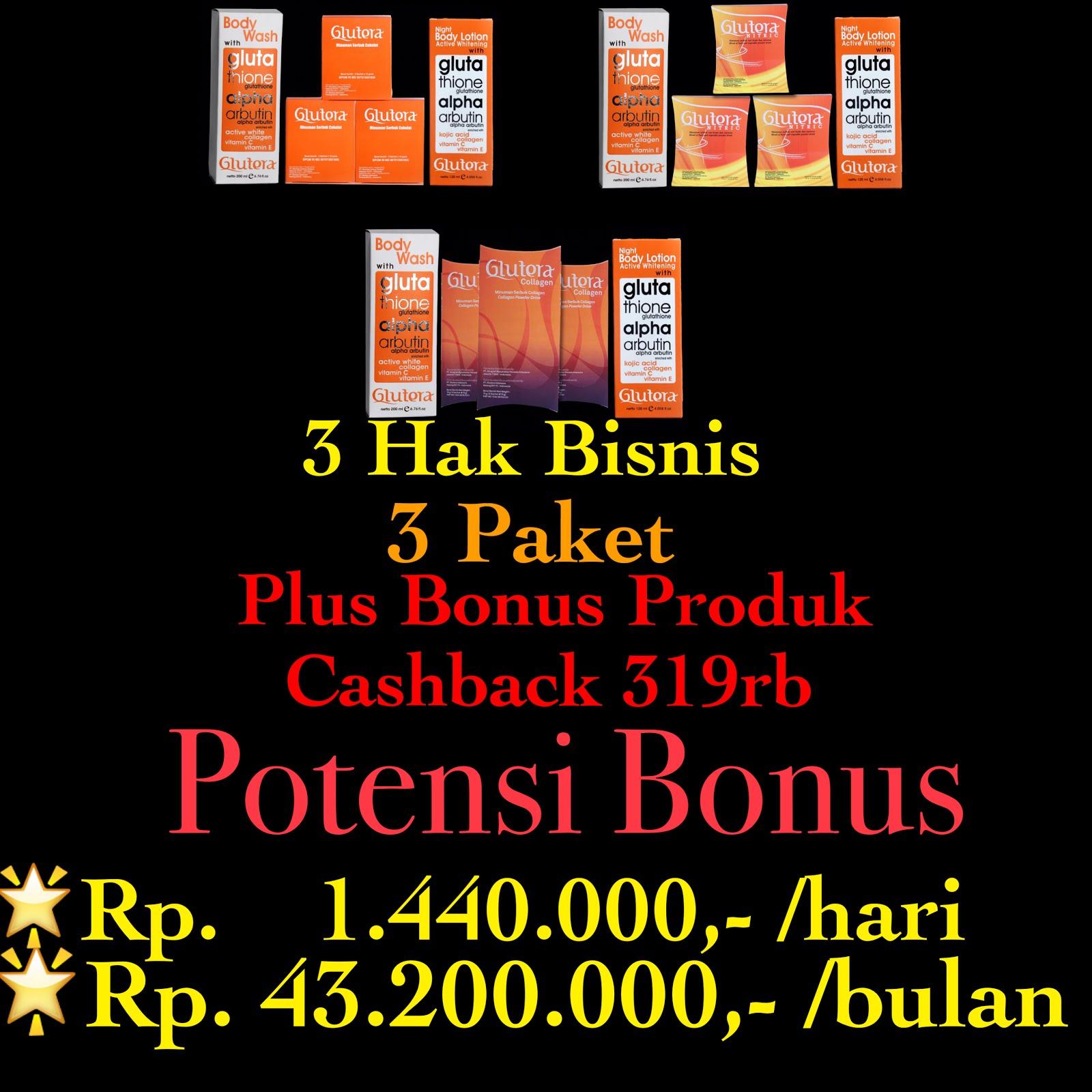 Potensi Hak Usaha 3 Paket