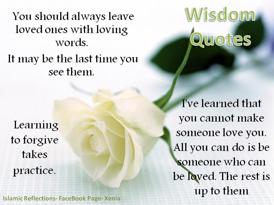 funny wallpapers wisdom quotes wisdom quotes wisdom quote