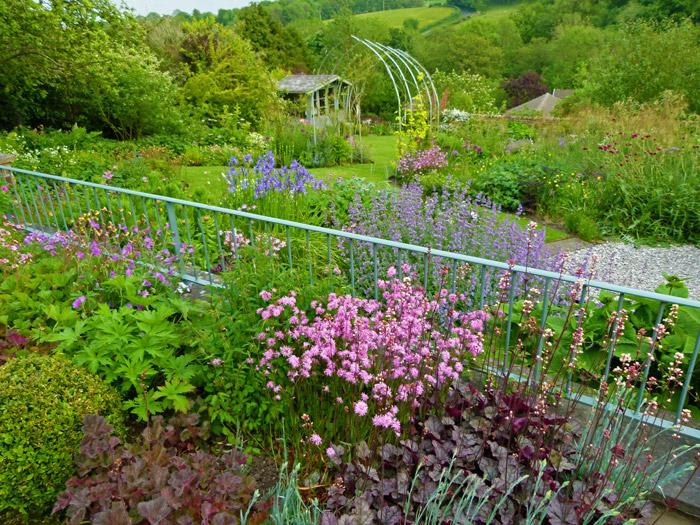 Burton in Lonsdale, open gardens, heucheras