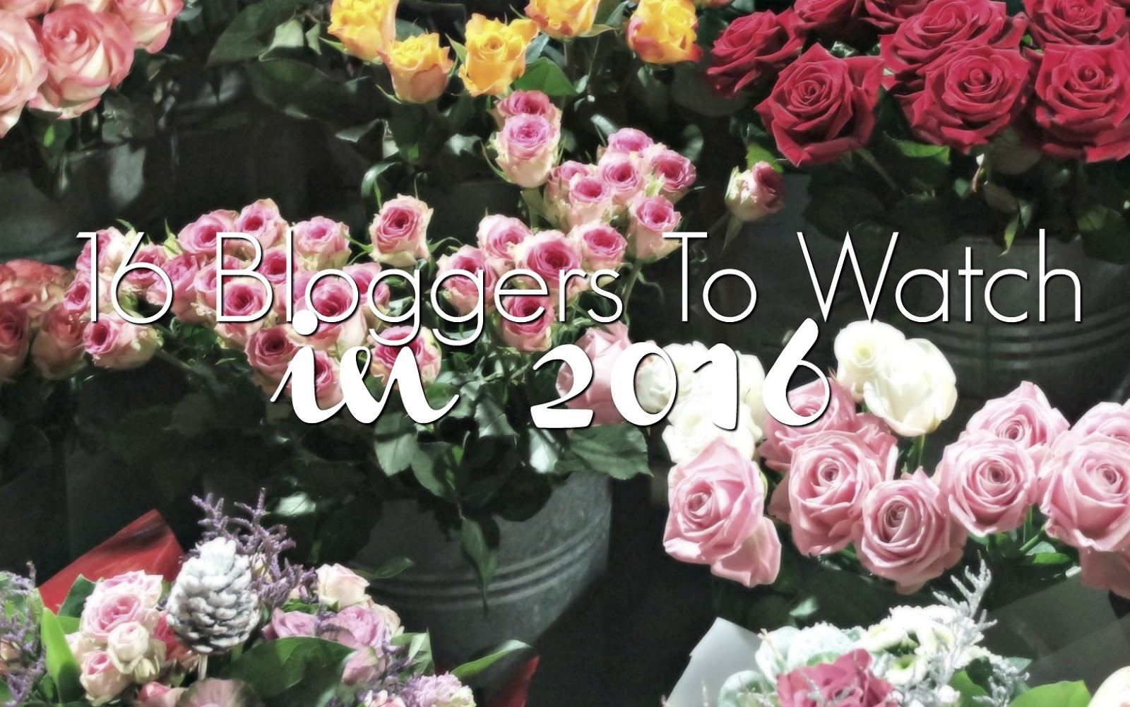 16 Bloggers To Watch In 2016