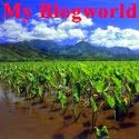 My Blogworld