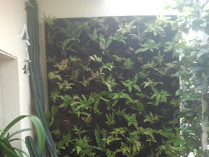 Jardines verticales y cubiertas vegetales abril 2013 - Estructura jardin vertical ...