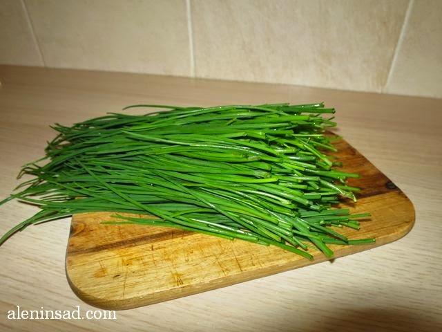 Allium schoenoprasum, шнитт-лук, шнитт лук, скорода, зеленый лук, первый лук, лук в срезке, перо, аленин сад