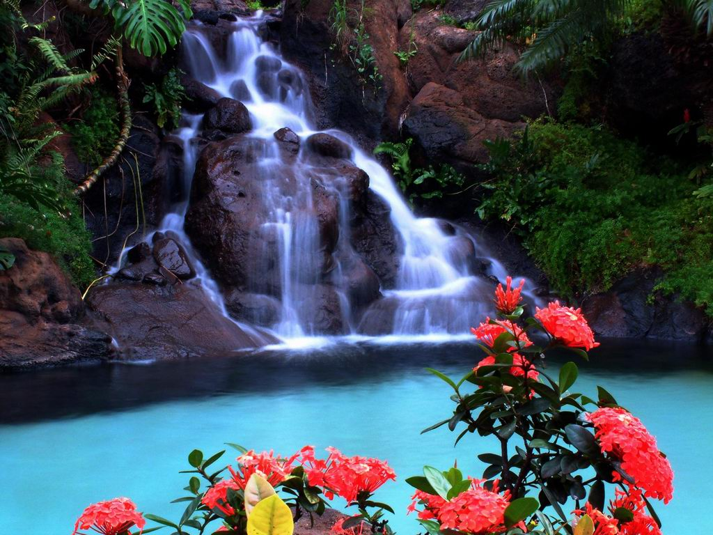 Wallpaper world waterfall wallpapers for Waterfall it
