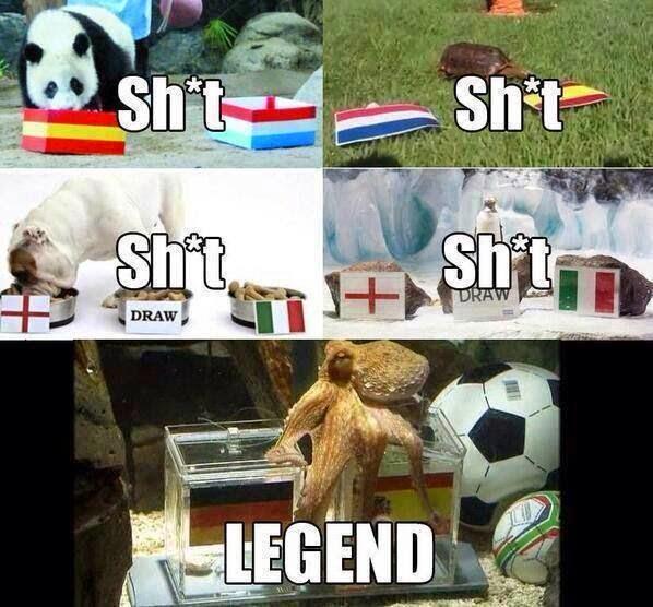 Best of lustigste Memes der Fußball WM 2014 Alaplaya - deutschland wm lustige bilder