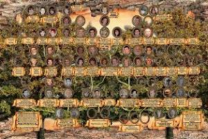 Сделаю на заказ макет генеалогического дерева