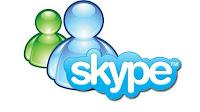 Skype-MSM