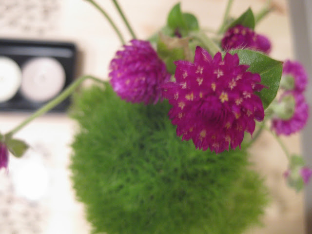 Food and floras green trick dianthus and fluffy little purple so i decided to pull them out and make a new arrangement and came up with this what are some some flowers you like to arrange together mightylinksfo