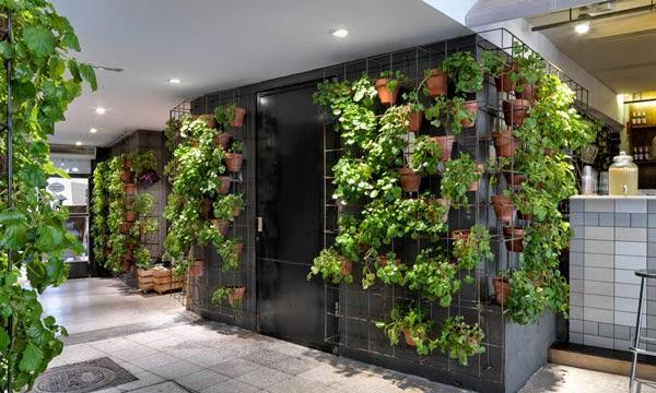 decoracion ecologica en un restaurante