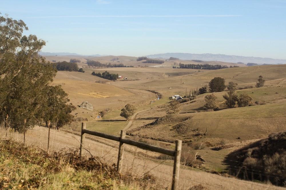 farmland petaluma hills