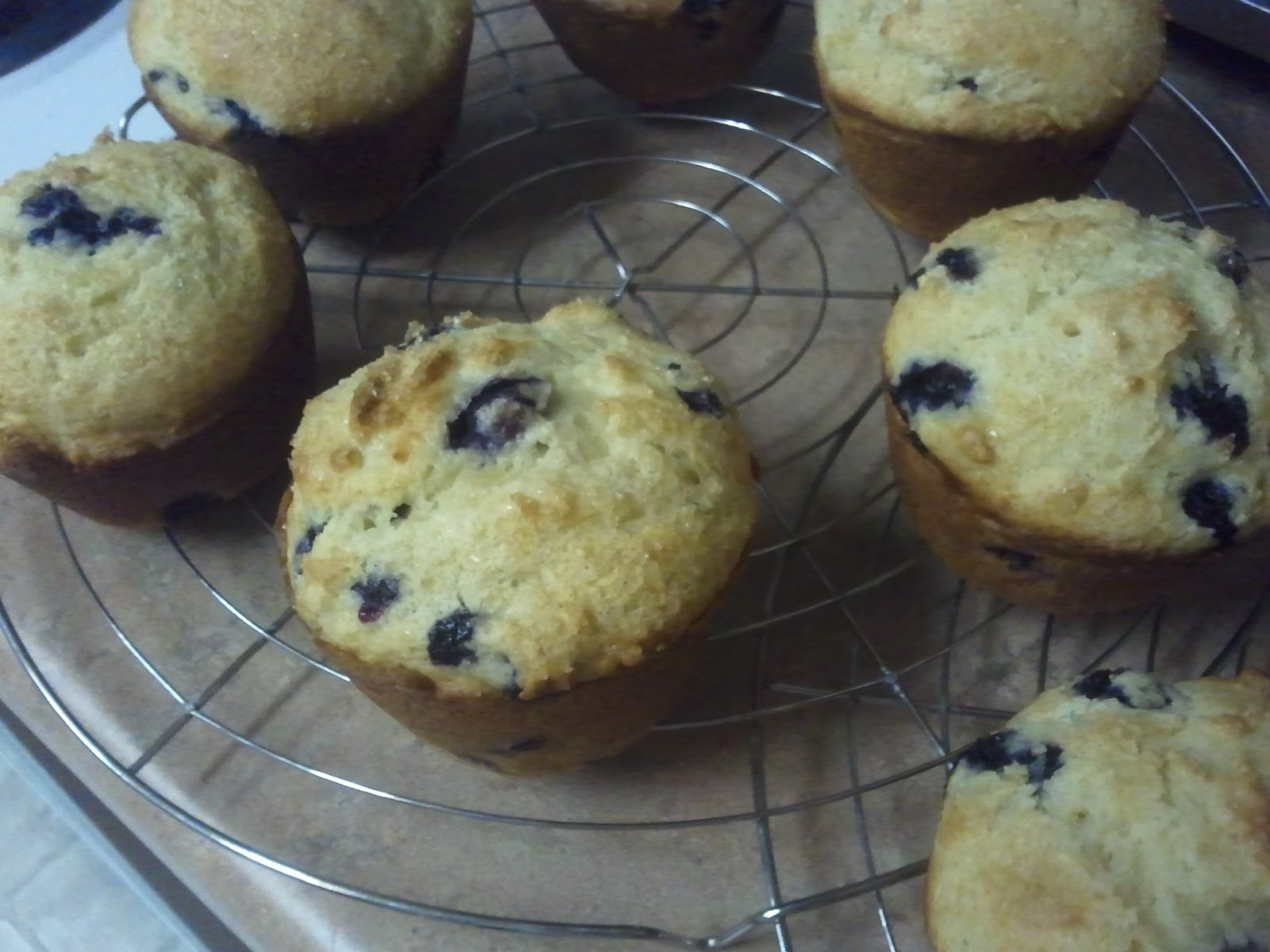 Chef Not Included: Sour Cream Blueberry Muffins