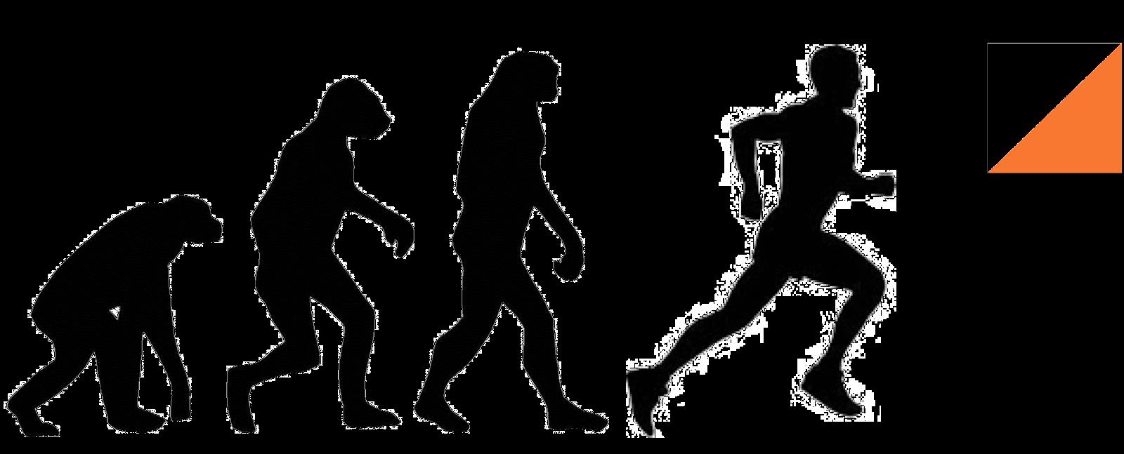 Evolución a buenas experiencias