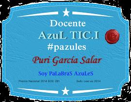 INSIGNIA DE PALABRAS AZULES