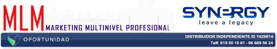 NETWORK PROFESIONAL ESPAÑA
