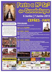 Festa a Nossa Sr.de Guadalupe 2014