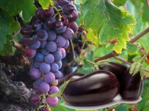 العنب والباذنجان أفضل علاج لارتفاع ضغط الدم