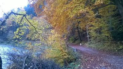 Droga do Czerwonego Klasztoru jesień