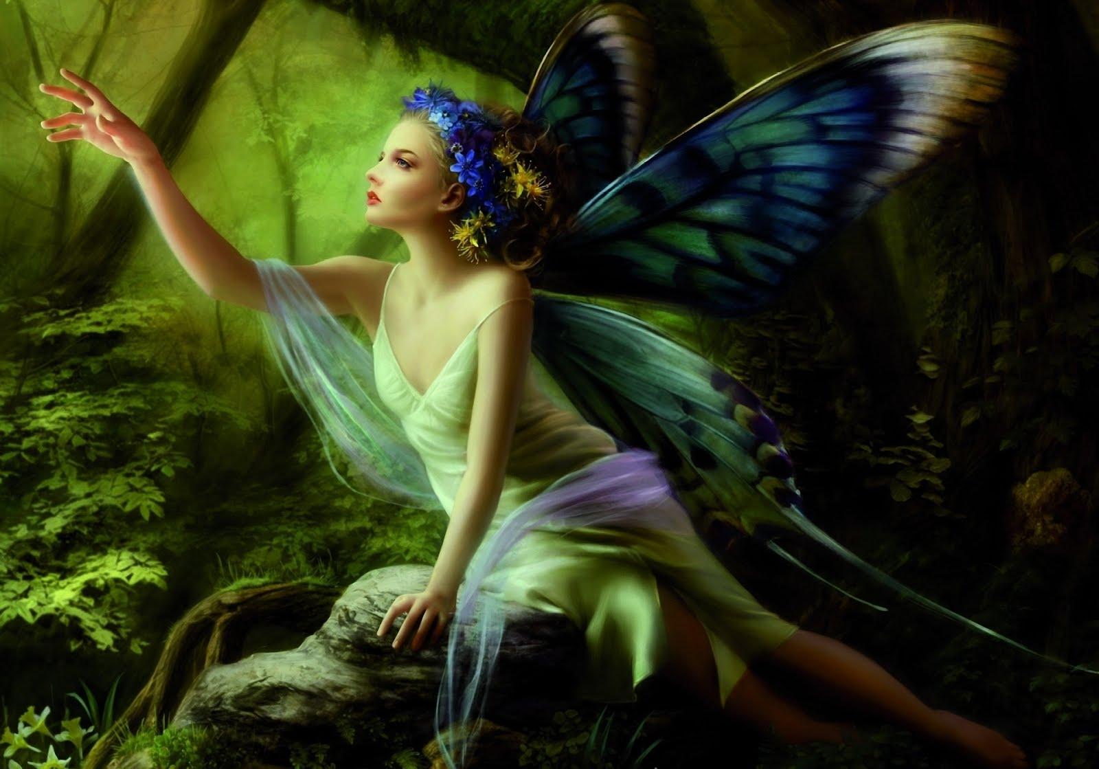 Imágenes de mariposas - Frases de mariposas