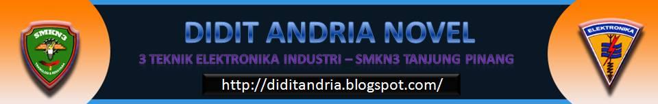 didit andria